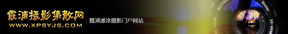 金凤凰娱乐